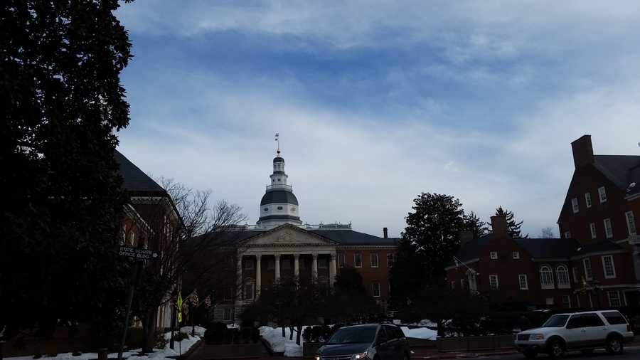 Jan. 28: The Maryland House Judiciary Committee holds a hearing on Amber's Bill.