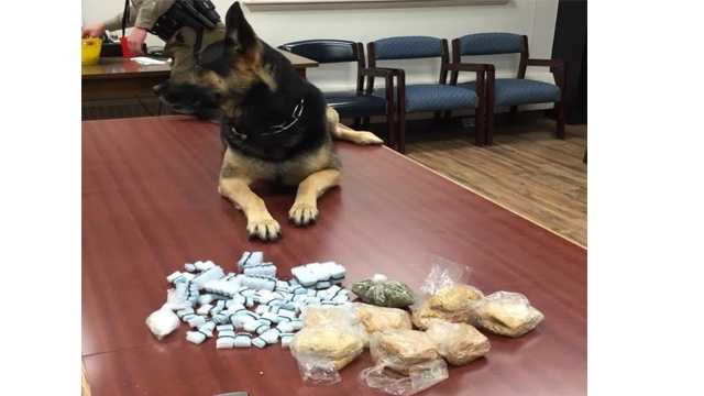 A Maryland State Police K9 detected drugs in a vehicle, which led to the arrest of three people Wednesday in North East.