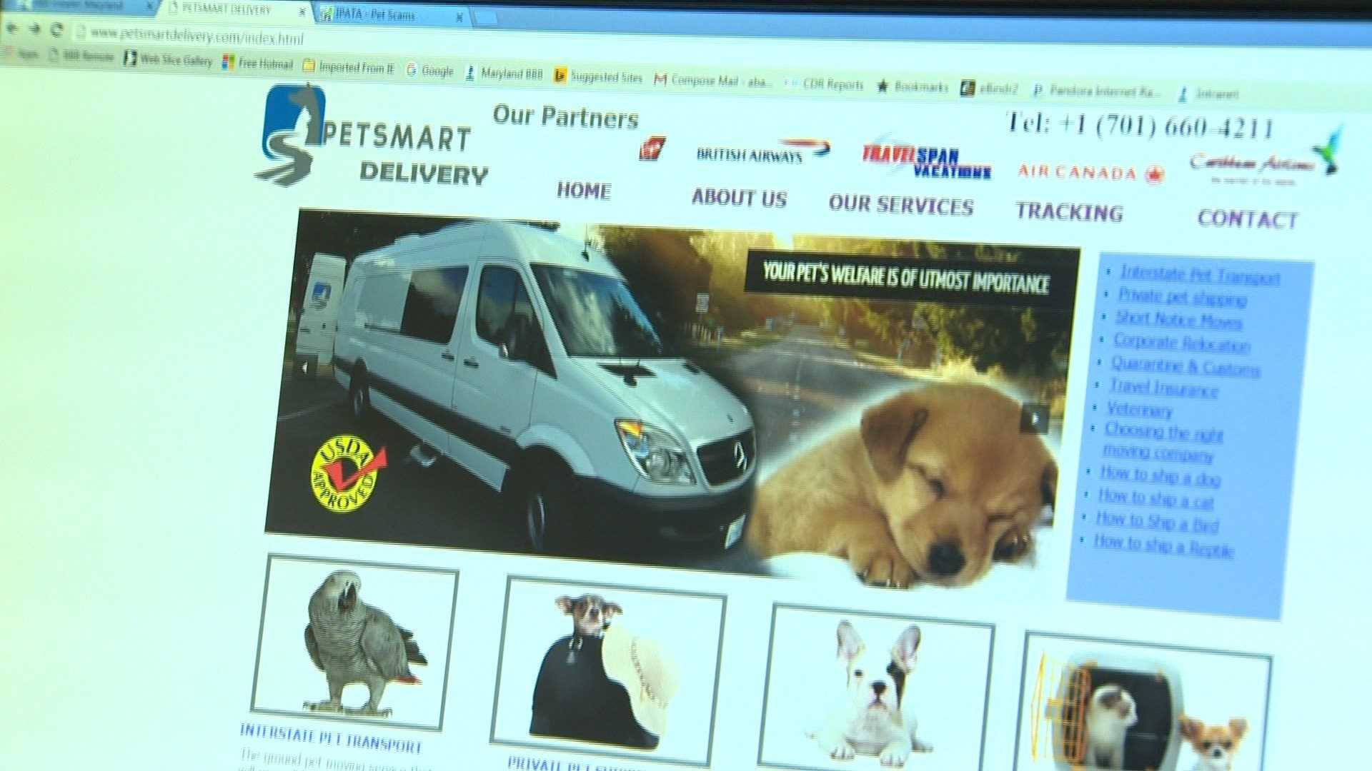 The Better Business Bureau is warning people to be aware on online pet buying schemes.