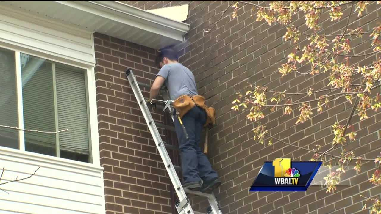 Crews are treating a Baltimore County apartment complex after a rabid bat was found in one unit. Pest control crews were working Friday in front of the Circle Terrace Apartment Complex building where a rabid bat was found. The tenant told 11 News she's glad they're there, but she hopes it's enough.