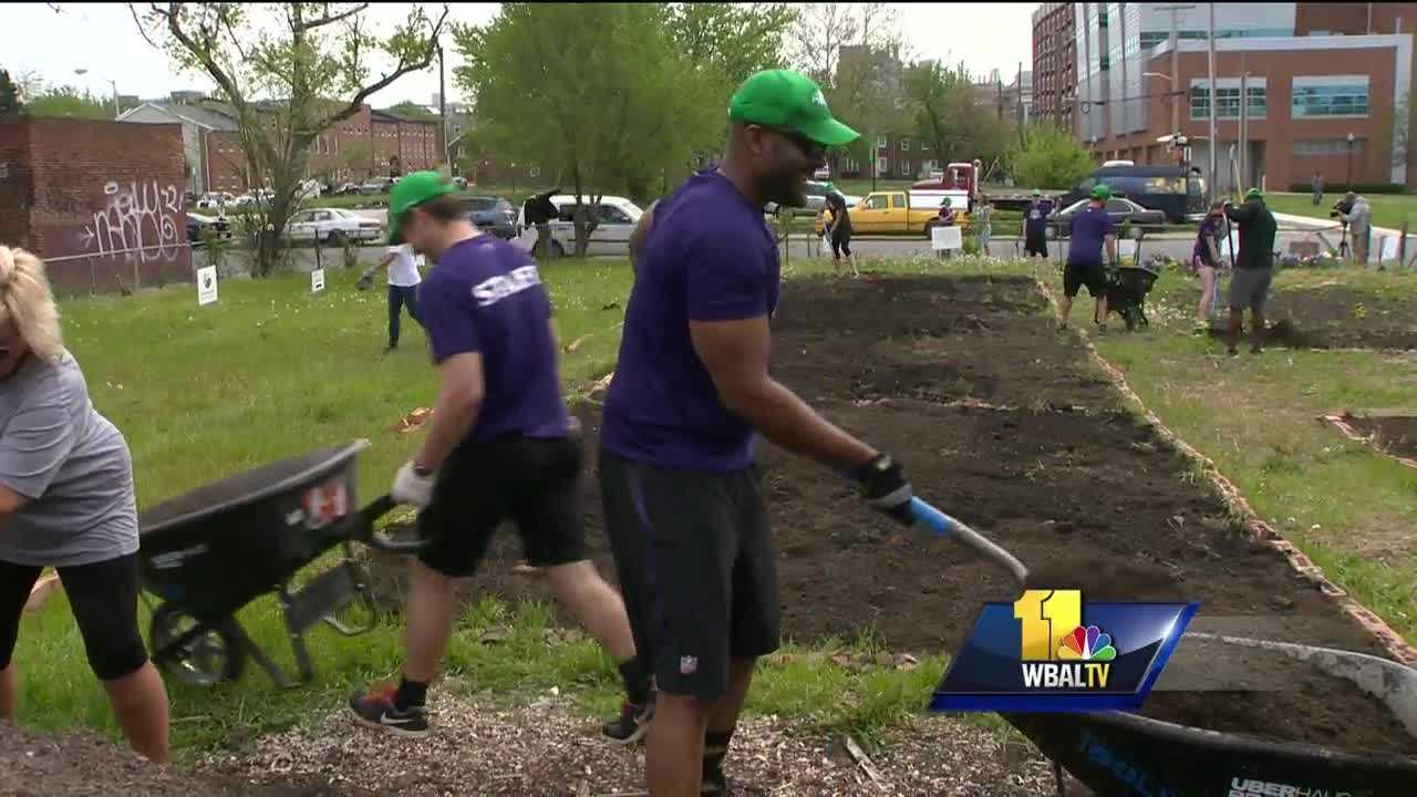 Wearing cowboy boots, Texas native Crockett Gilmore looked right at home in the dirt. The Ravens tight end spent Earth Day making flower beds in west Baltimore.