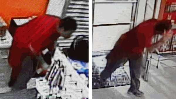 Essex Family Dollar Store burglary suspect