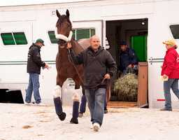 Uncle Lino arrives at Pimlico Race Course