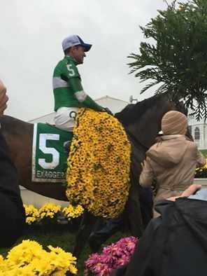 Exaggerator with the winner's blanket