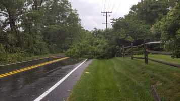 A tree blocks half roadway on Route 144 (Frederick Road), about 1.5 miles west of Route 32.