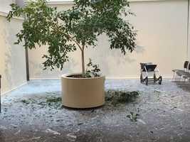 A chunk of marble fell through the skylight at City Hall.
