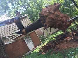 Todd Heisig says his two kids were there when a tree fell through his home on the 14000 block of Burntwoods Road in Glenelg. No one was hurt.