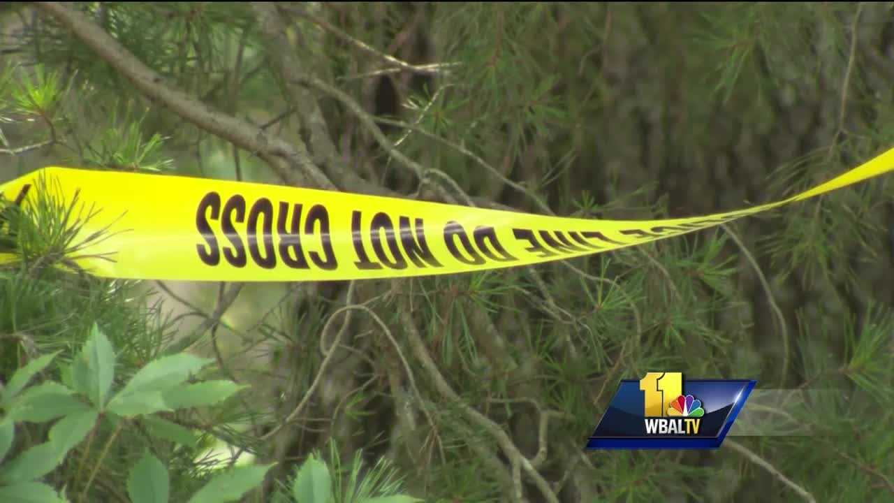 Two suspects have been killed in a case that spanned two days and two houses. Though it's early in the investigation, Anne Arundel County police said they believe that the two men were shot and killed late Saturday night while trying to break into a house. There was still a bullet hole in the front door of the house Monday, and police tape was up around the property. Investigators said they believe that the two men were trying to break into a house on Sandy Farm Road when they were confronted by a resident and both men were shot.