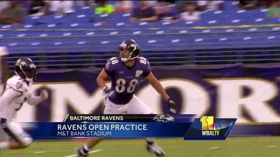 Ravens tight end Dennis Pitta continues his comeback after two serious knee injuries.