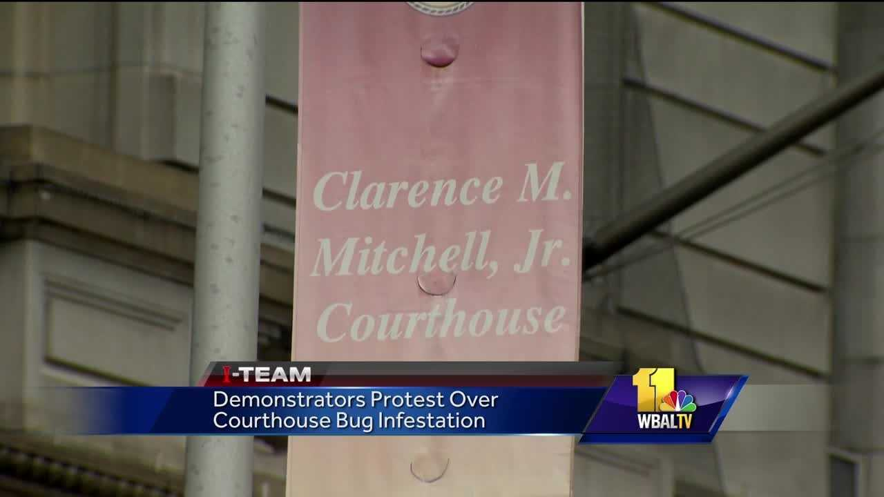 There is an ongoing controversy brewing at Baltimore's downtown courthouses involving bugs. Several people have reported being bitten by insects infesting the buildings. It drew protesters Friday.