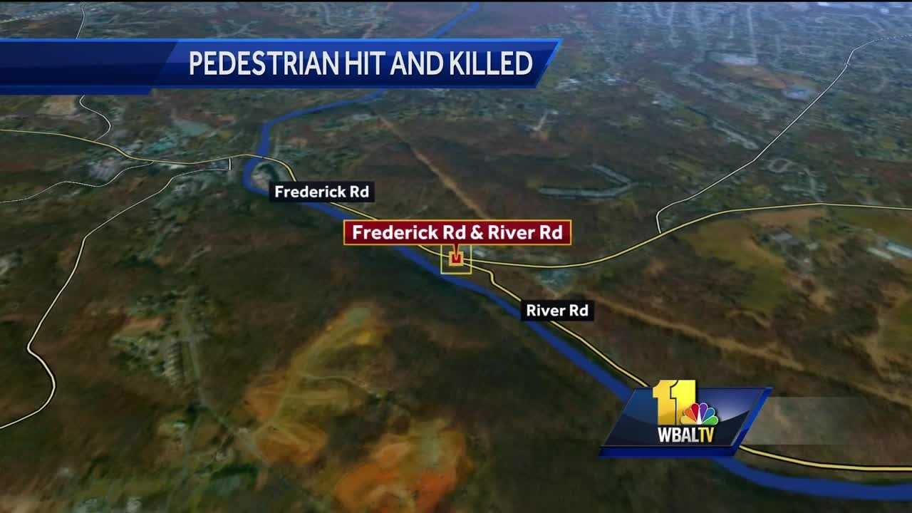 A Pasadena man died Monday after he was struck by a car while chasing after his dog in the Catonsville area.