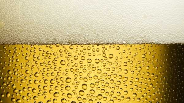 Beer Drinking Alcohol Generic - 8459747