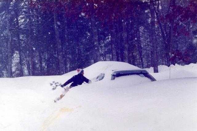 Where's My Car?