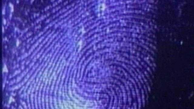 Fingerprint - 16958813