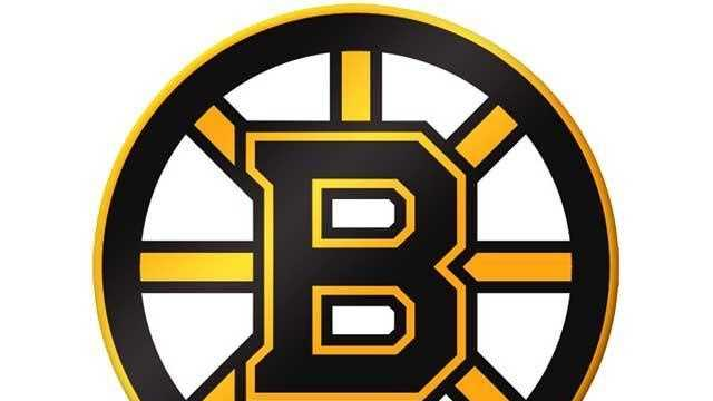 Bruins Logo - 14740882