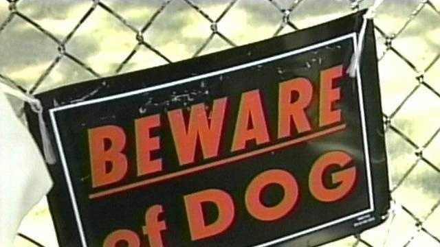 Beware Of Dog Sign - 13285722
