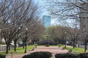 The view of the Hancock from the Commonwealth Avenue Mall.