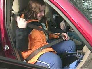 Motorists are reminded to wear seatbelts, and to avoid distractions such as playing with the radio, using electronic devices, or wearing headphones.