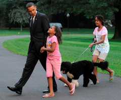 Long before the Obama family went for a walk with Bo,