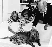 The Ford family gathers around Liberty and her new litter of puppies in 1975.