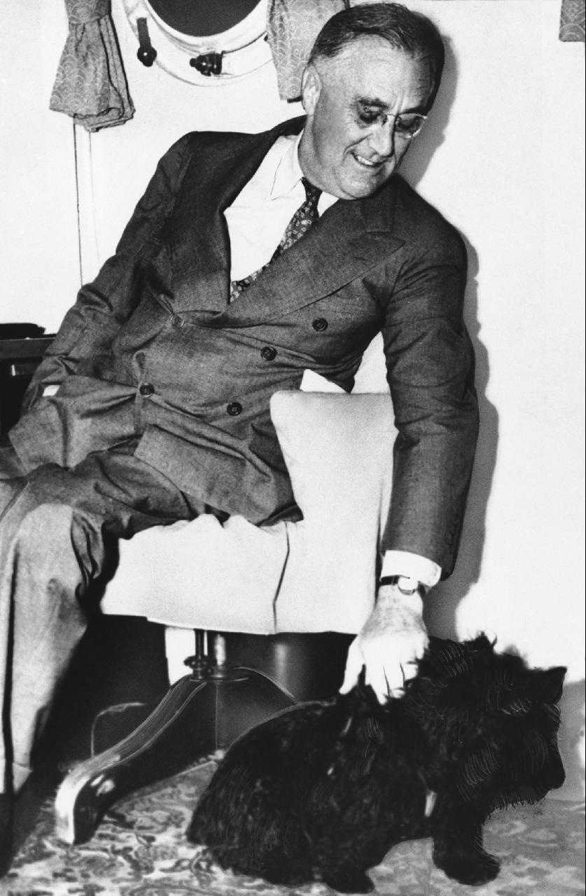 Franklin Roosevelt with his Scottish terrier Fala.