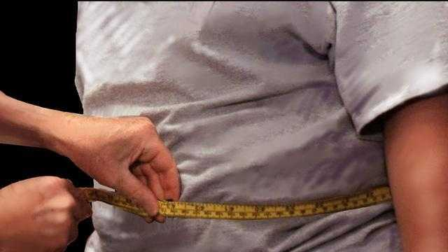 overweight, obese, obesity - 1788381