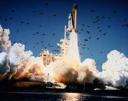 The space shuttle Challenger lifts off at 11:38 a.m on Jan 28, 1986. The entire crew of seven was lost in the explosion 73 seconds into the launch.