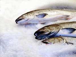 25.) Fish