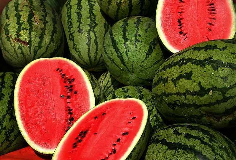 Watermelon is high in water.