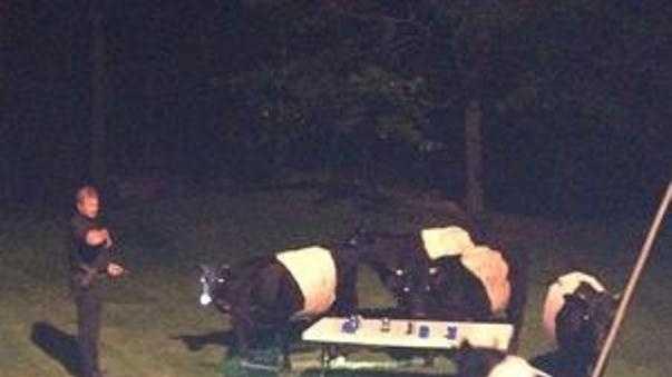 Boxford police raid bovine beer bash