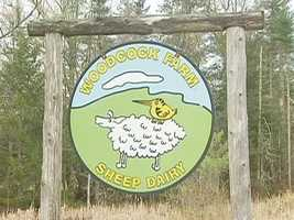 The Fischers have carved out a niche market with their sheeps' milk cheese.