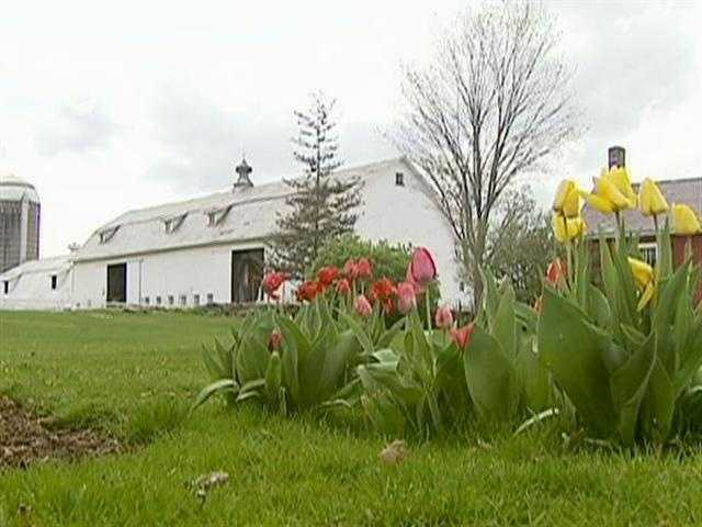 West Pawlet was a sleepy sort of place until this early 1800's dairy farm was resurrected.