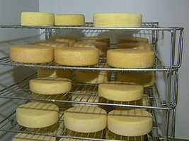 They created a buttery, raw milk cheese, from the farm's Jersey herd.
