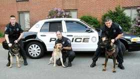 L-R, Braintree officers with their dogs: Ken Murphy and Dargo, Richard Seibert and Lucky, and Tom Flannery and Czar.  The only dog still on duty is Lucky, who is trained exclusively in drug detection.
