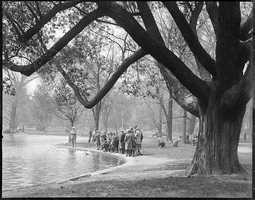 Landscape architect George F. Meacham won a public contest, that paid $100.00, to design the Public Garden.