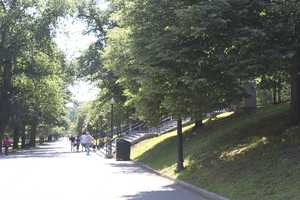 Boston Common consists of 50 acres of land.