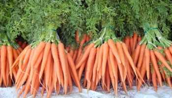 Foods with a low glycemic index, like carrots, take longer to digest, allowing blood glucose levels to remain steady.