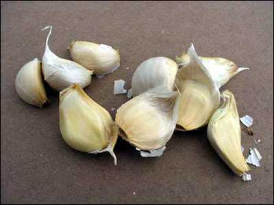 Garlic is therefore considered a natural remedy for erectile dysfunction.