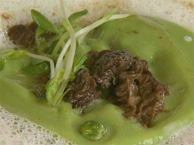 Lighter items include a sweet pea flan with morel sauce and parmesan.