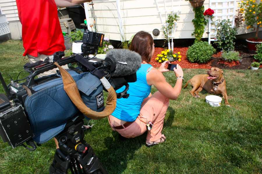 NewsCenter 5 videographer Karen Lippert takes the photo you saw earlier in this slideshow.