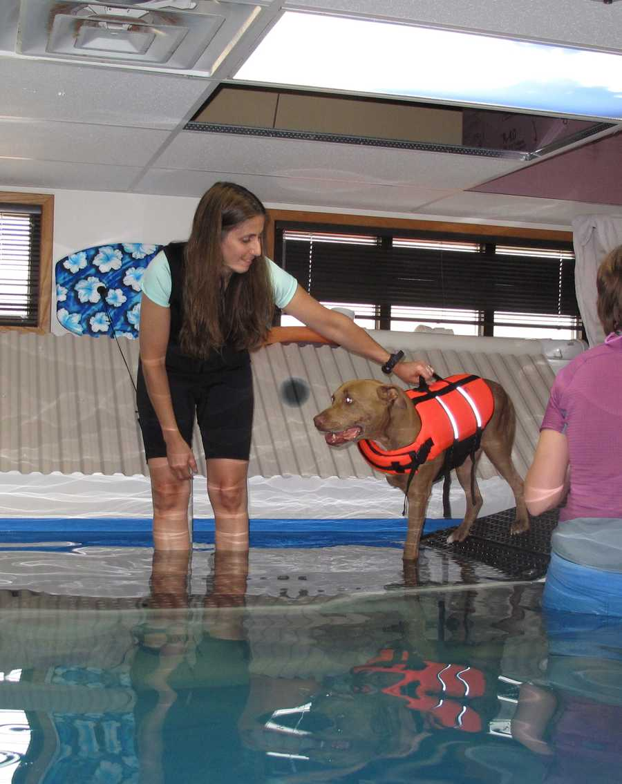 Lilly goes to physical therapy and has recently started working with trainers in a pool.