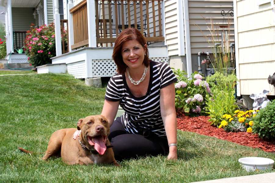 In August, Lilly will be honored by the MSPCA as the animal hero of the year.