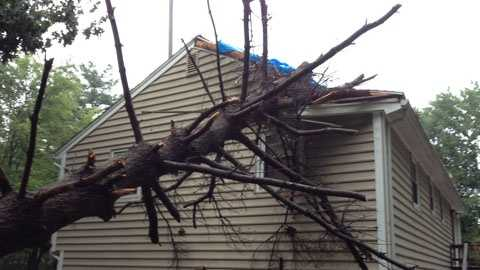 Sunday's storms left a downed tree on a house in Wilmington.