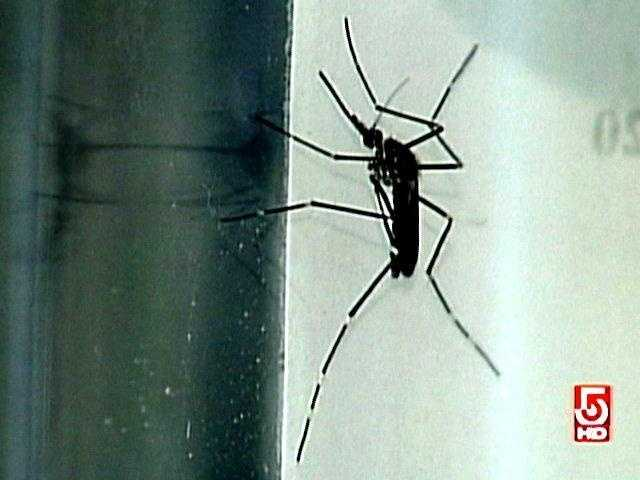 """Every community in the state is now at least at """"moderate risk."""" The following towns are considered at """"High Risk"""" by the state health department for mosquito-borne illnesses..."""