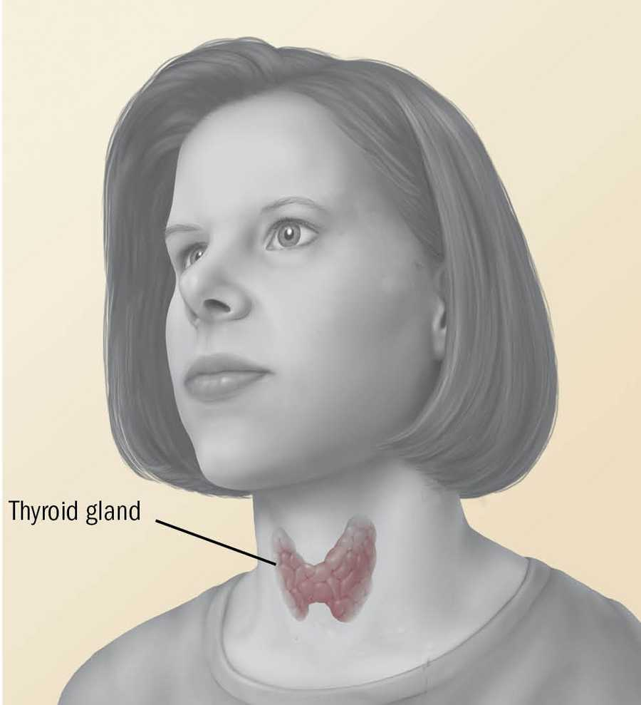 When your thyroid is out of whack, it can disrupt the balance of male and female sex hormones.