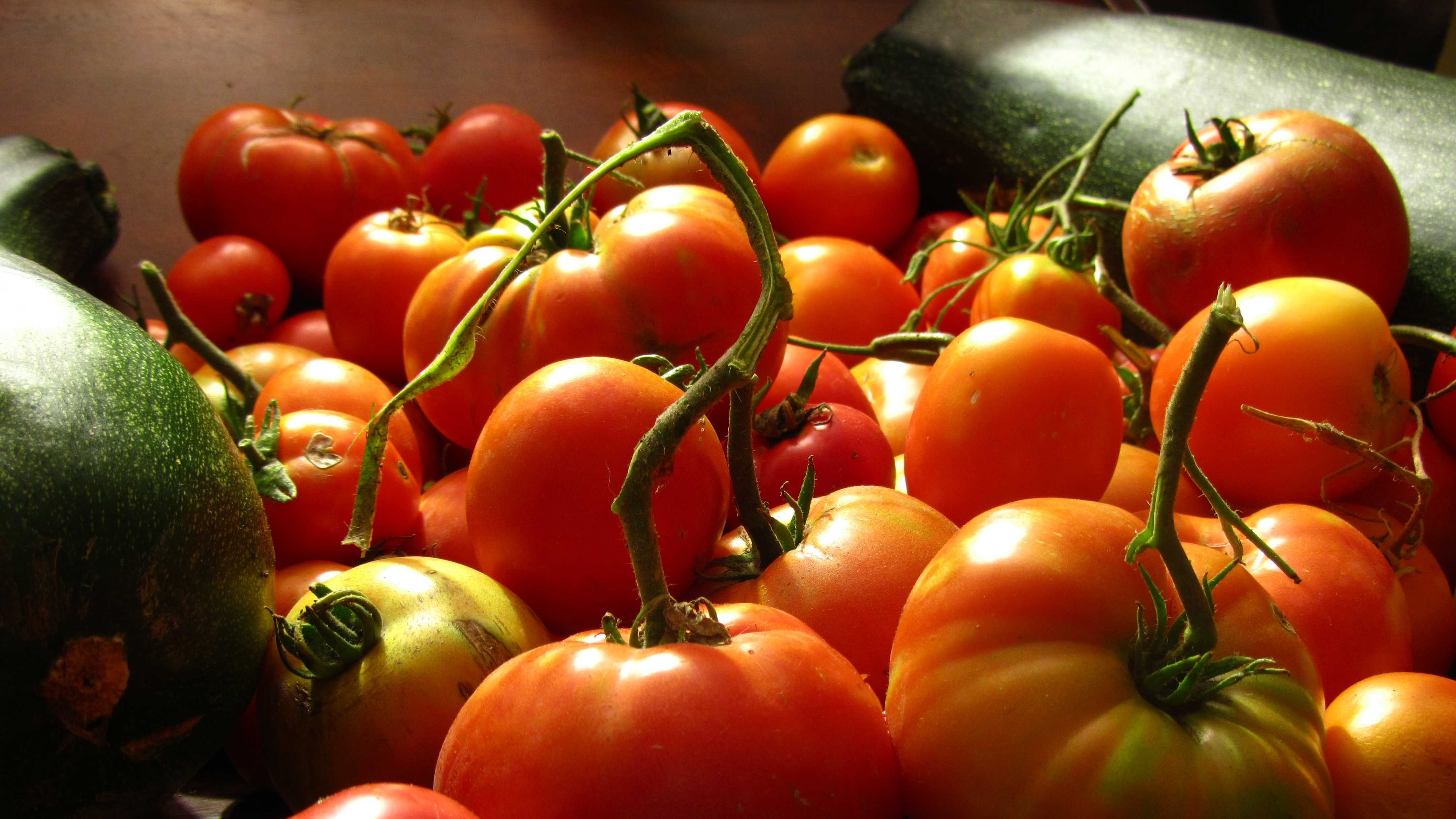 Tomatoes are part of the Mediterranean Diet.