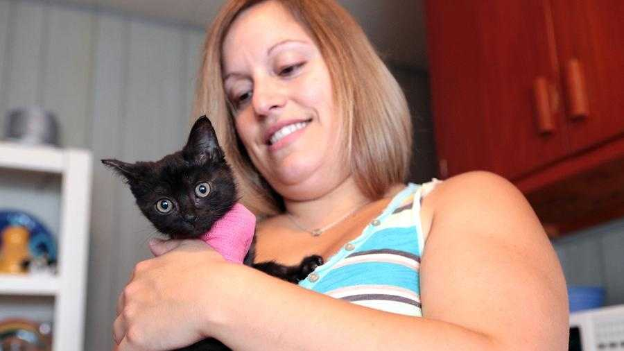 Stacey Pulsifer holds her newly-adopted kitten , Pumpkin, after it hitched a ride in her Jeep during a 100-mile trip to Elizabethtown and back. The pink sling holds her broken paw in place until the kitten is 6 months old so veterinarians can amputate the limb.