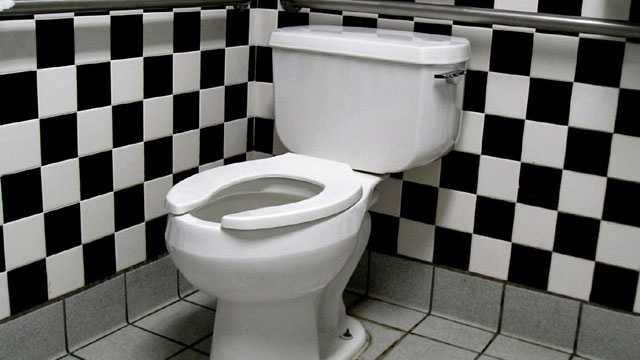 Toilet blurb