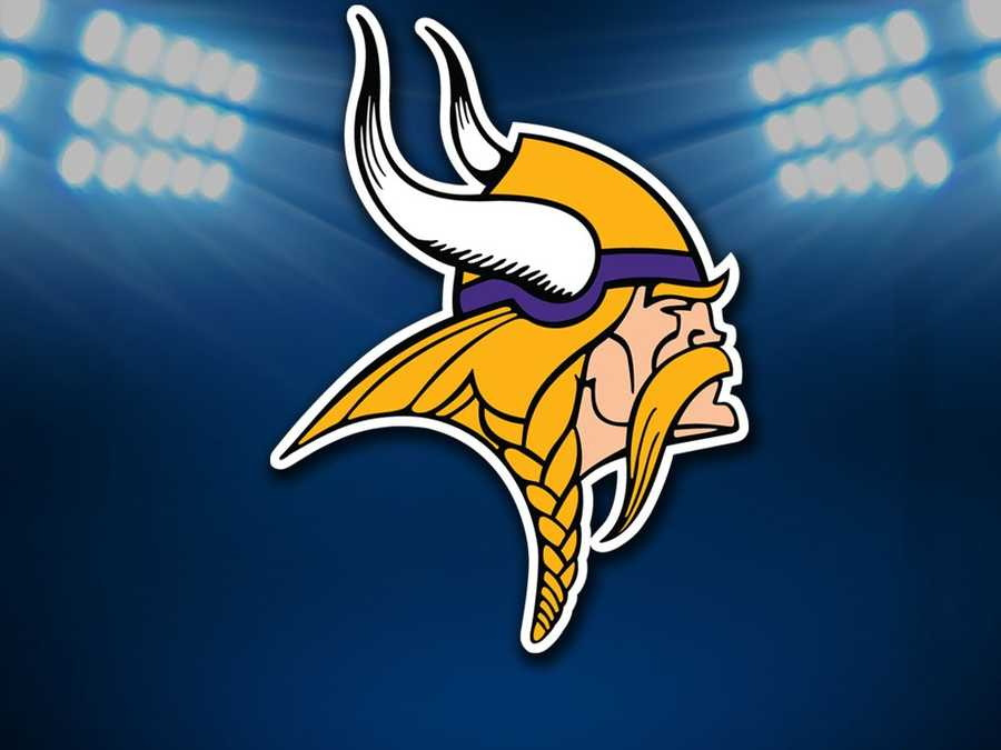 #15 - Minnesota Vikings - Average ticket price of $75.29 is the same as last year.Parking: $15.00Hot Dog: $3.00Soft Drink: $3.00