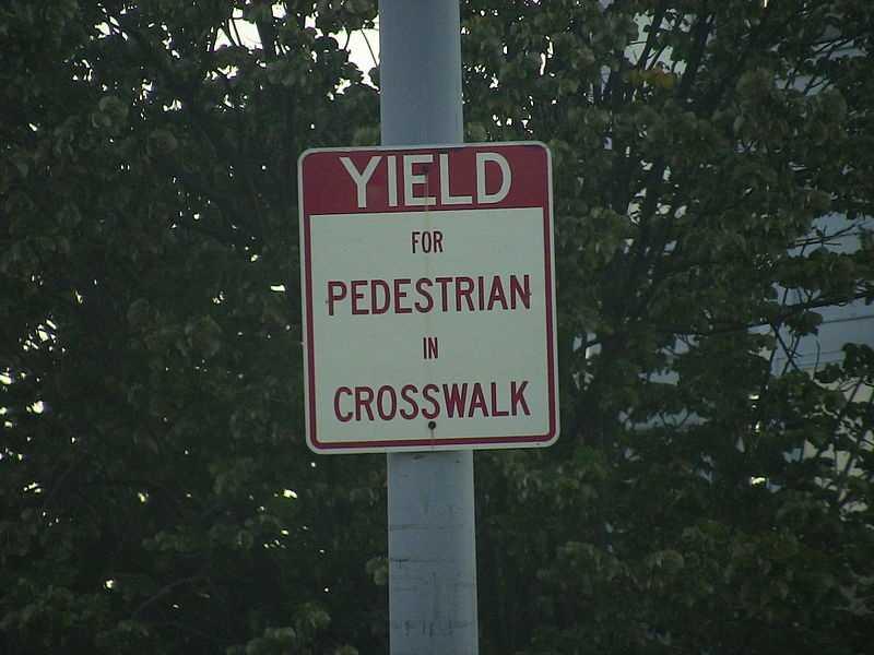 The pedestrian